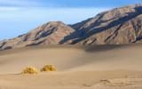 sand dunes-death valley