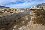 Salt Creek-Death Valley