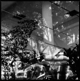 Metaphor/Abstract