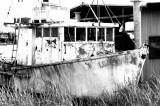 The Derelict