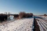 The Marsh Loop