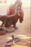 A Man and His Snake, India