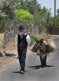 The Mayor and his Donkey