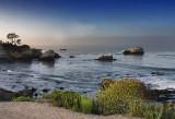 Morning at Shell Beach