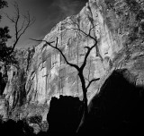Zion: Light & Shadows