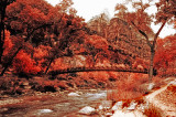 Infrared: Bridge to Emerald Pools Area