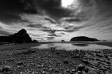 Harris Beach Mono