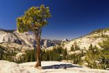 Olmstead Point, Yosemite