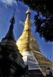 Golden Stupas at Shwedagon