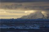 Elephant Is South Shetlands Antarctica  DSC_9340.JPG