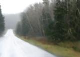 desolate and rainy