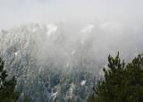 neakahnie in the mist