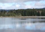 even more wetlands