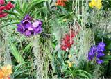 Quick visit to Kew