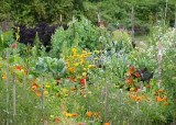 2 flowers and veggies