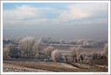 Frost (3)