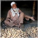 Potato Vendor - India