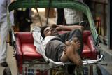 Noon Rest - Delhi, India
