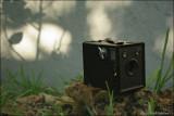 120 Kodak Verichrome Pan
