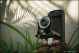 Kodak Jr Six-16 series III camera