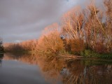 Navidad River 10-2-04