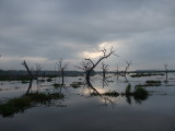 Texana Dawn 9-2-07