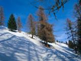 Ski moutaineering Swiss Alps