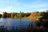 Morton Arboretum - Marmo Lake