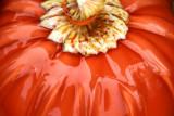 Morton Arboretum - pumpkin patch