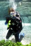 Cincinnati Zoo - Diver
