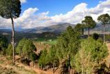 Sarsawa Valley 3