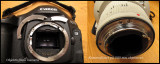 A 3000 dollar repair!! My Eos-1 MkIV fell from my backpacker together with 500 mm lens