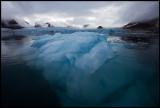 Floating ice near Smeerenburgbreen - Svalbard