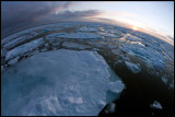 Pack ice near 82 degrees north (on top of the world!!!)
