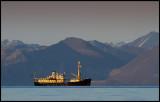 Our expedition vessel - M/S Origo (from Gothenburg) west Spitsbergen