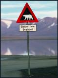 Allways bears around the corner??