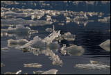 Floating ice formations