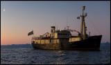 Origo at dusk - Pris Karls Forland