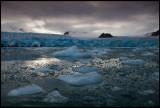 Floating ice near Smeerenburg glacier