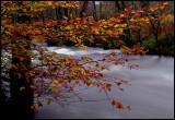 Stream near Arrochar