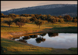 Early morning in Monfrague - Extremadura