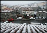 Newly fallen snow otside my window at Hoyos del Espino
