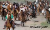 Sombrero Horse Drive 2011