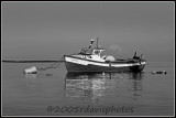 Old Snug Harbor Boat or Bird Boat