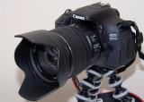 Canon 600D: First Photographs