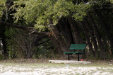 One - The Bench
