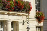Mairie fleurie_0884r.jpg