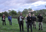 Twitching of Green Warbler near Tbilisi