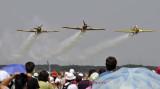 Iacarii Acrobati_1.JPG