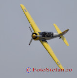 Iacarii Acrobati_8.JPG
